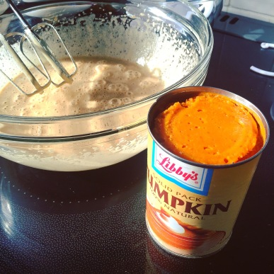 Pumpkin mix
